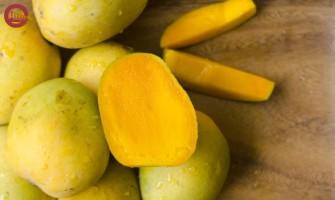 Himsagar - The King of Mangoes
